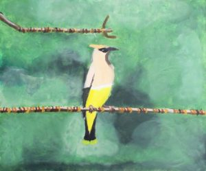 yellow-bird-2016-acrylic-on-canvas-50-x-60-cm